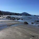 Photo de Castaway By the Sea