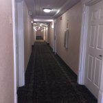 Foto de Baymont Inn & Suites Ft. Leonard/Saint Robert