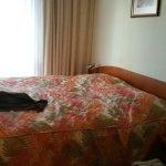 Photo of Hotel Seifert