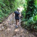 Na'Pali coast walking track in fine form!