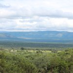 View of the bushveld