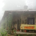Swing at Deodar Papparsalli Almora by Jagdish Agarwal