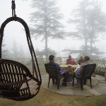 Morning at Deodar Papparsalli Almora by Jagdish Agarwal