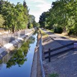 Contra Costa Canal Trali, Pleasant Hill, CA, May 2016