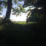 Foto de Feather Down Farms at Midgham Farm