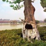 Hyatt Regency Dongguan Foto
