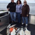 Halibut, King/Chum/Coho/Pink Salmon, Rock Fish, Red Fish