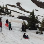 Grand kids sledding on snow at Cottonwood Pass ~ 1200 feet.