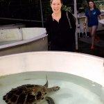 Turtle Center