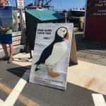 sign advertising puffin tours