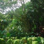 Hacienda Chichen Foto