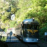 Savanahlander train