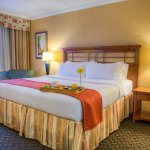Holiday Inn Windsor Downtown resmi