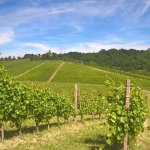 Photo de Albergo L'Ostelliere Villa Sparina Resort
