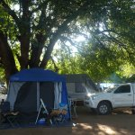 Shady campsite