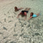 Luxury Bahia Principe Akumal Don Pablo Collection Photo
