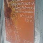 Jardin Botanico puerto morelos seminar june 2016