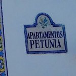 Фотография Апартментс Петуния