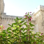 Foto de La Locanda Al Castello B&B