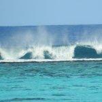 Painapo Beach Moorea Foto