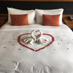 Perfect welcome for Honeymooners