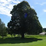 Photo de Golf Resort Haugschlag