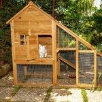 Garden - rabbit house
