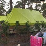 Photo de Camping le Vieux Port