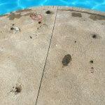 Sandcastle Suites Foto