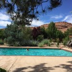 Gorgeous lap pool with a view in the backyard of the Mayor's House B&B