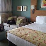 Studio queen bed and sleeper sofa