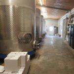 Foto de Silver Coast Winery