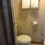Toilet and compact stall shower- sink is in room.