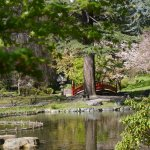 Albert Kahn Musee et Jardins: Japanese gardens