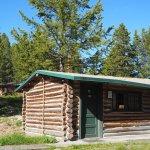 Cabin 831