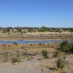 The Boteti River channel at Laroo La Tau