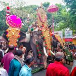 The elephant procession at the start of Pooram, just around the corner from the guesthouse