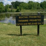 Pond rules