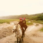 Horse riding in Newquay 2016_large.jpg