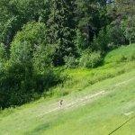 Trickle Creek Lodge Foto