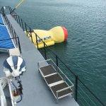 D-Boat Antigua resmi