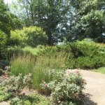 Luthy Botanical Garden, Peoria IL, June 2016