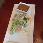 I like the appetite ( spring roll). Very authentic Asian taste and the dip taste good also. The