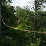 Da Flying Frog Canopy Tours Foto
