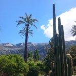 Foto de Jardín Botánico de Soller