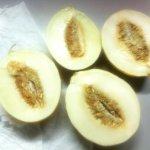 Colazione fruttariana 17/06: meloni Gialletto