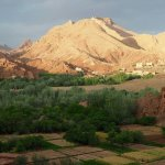 Discover Morocco - Day Tours