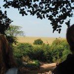 View from Basecamp Masai Mara