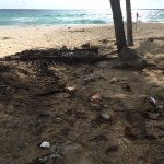Dirty uncleaned beach