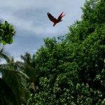 Vista Las Islas Hotel & Spa Foto
